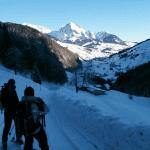 Bergpracht