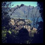 Ausblick auf Ascona