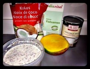 Mango-Kokosnuss-Pudding
