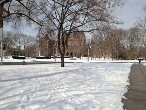 Park bei der Uni