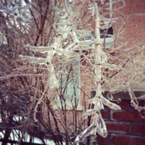 Icy Toronto