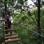 Wackelbrücke in den Bäumen