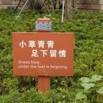 Chinesischer Schilderwald