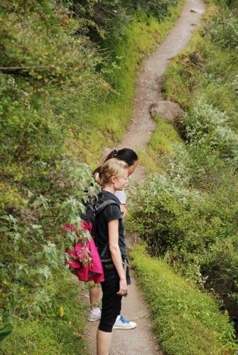 Die Wanderer