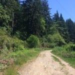 Wandern in North Vancouver