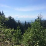Mount Fromme