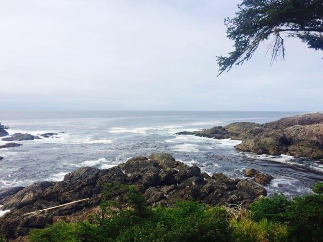 Das wilde Meer