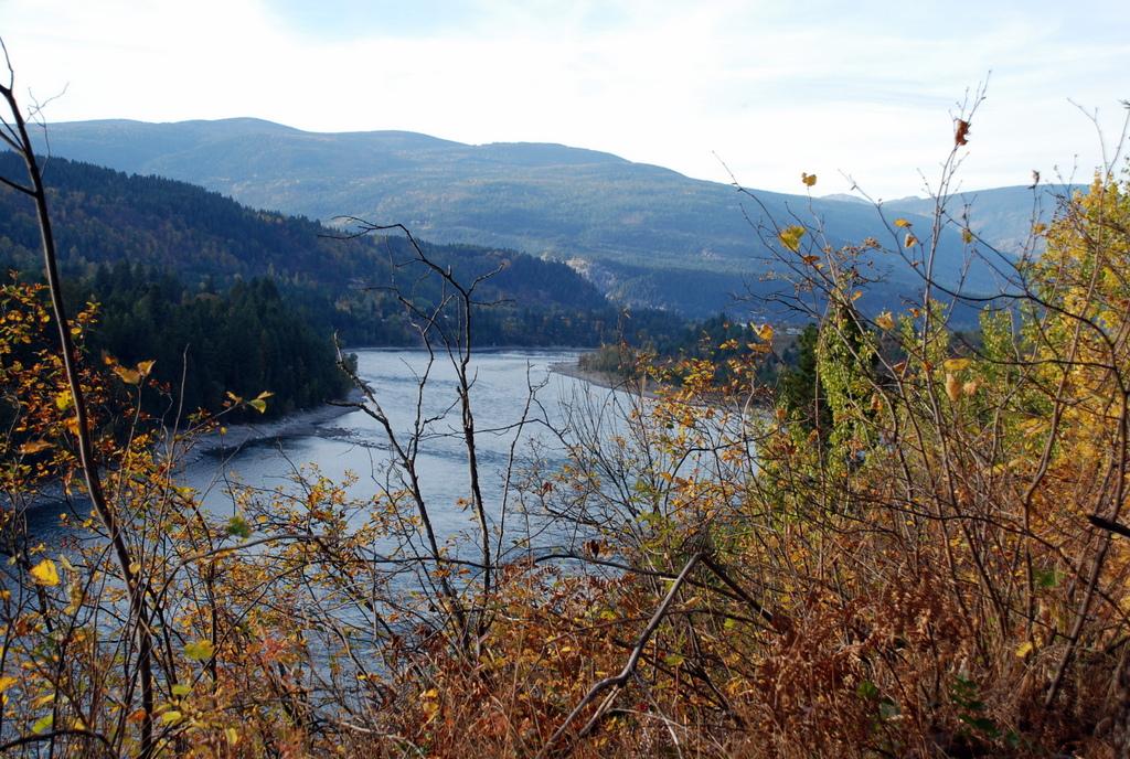 Blick auf den Kootenay River