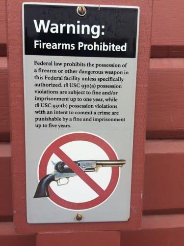 Guns & USA