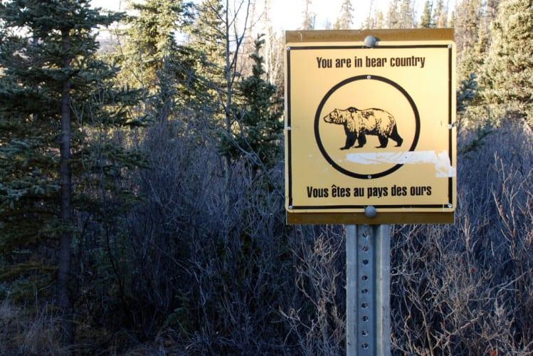 Bärengebiet