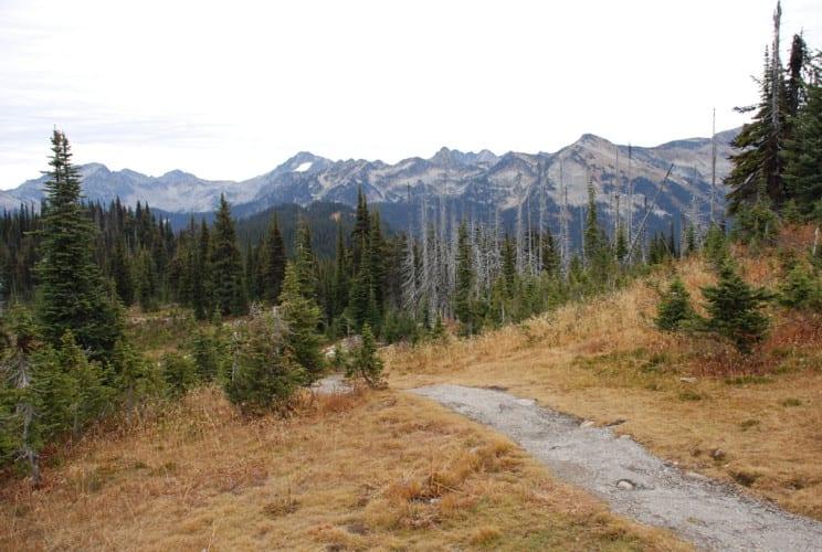 Wanderung bei Mt Revelstoke