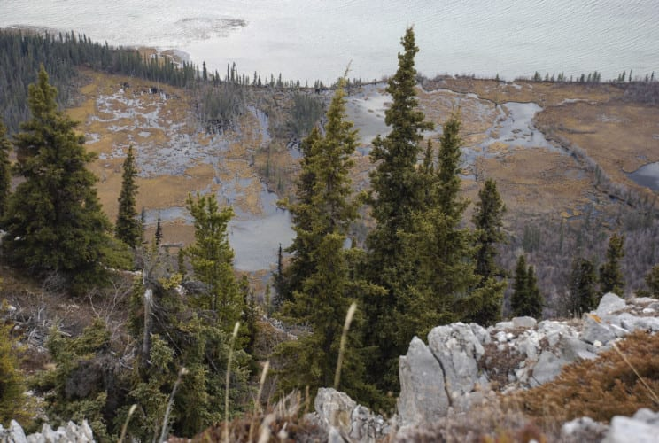 Wanderung Mount White