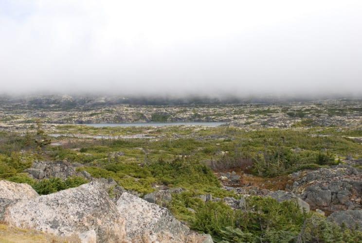 Yukon_151210_0057