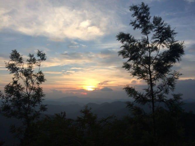 Sonnenuntergang über den Teeplantagen