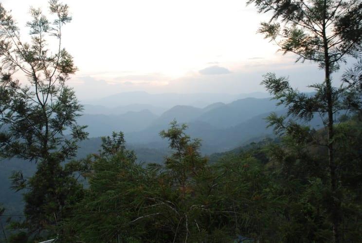 Morgenstimmung in Munnar