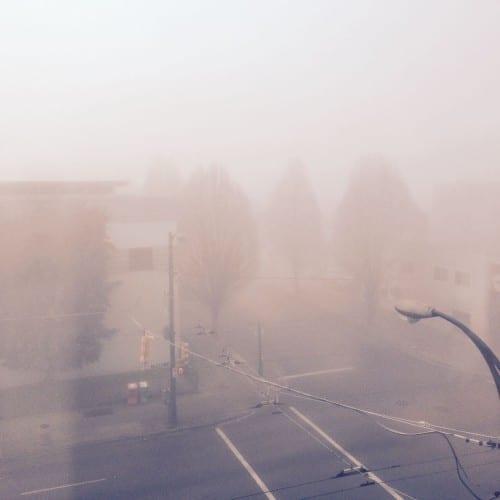 Nebel im neuen Jahr