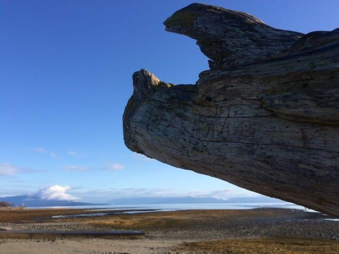 Holzmuster am Strand