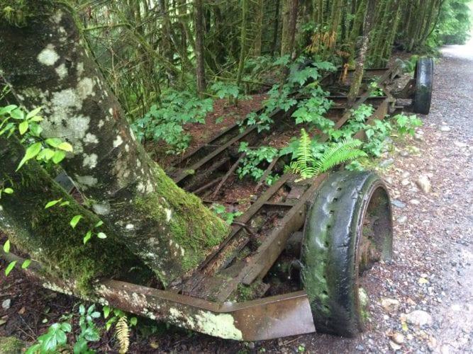 Geschichte im Wald