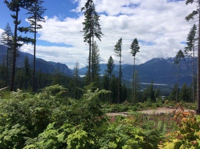 Biking in Squamish
