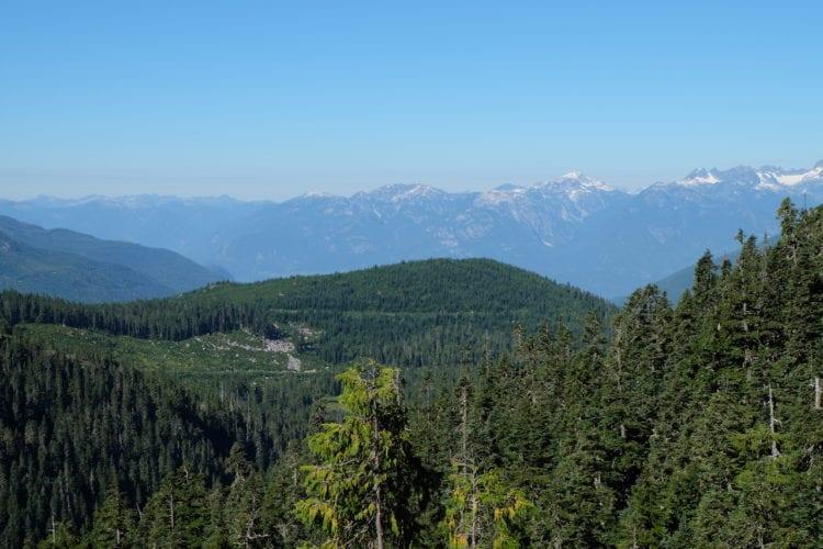 Bergpanorama ringsherum