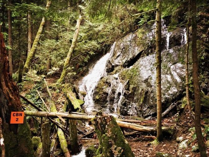 Die trails