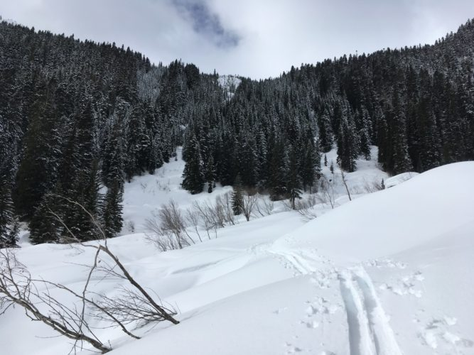 Tief im Schnee