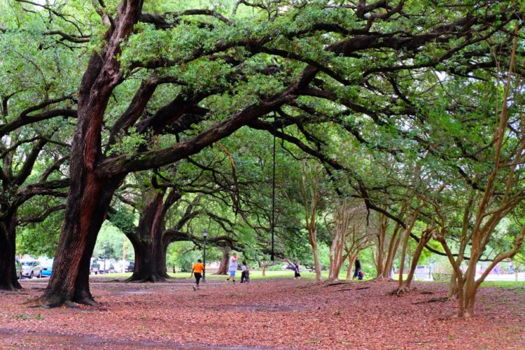 Park in New Orleans