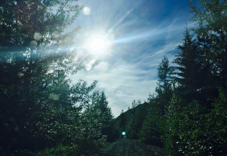 Fahrt in die Sonne