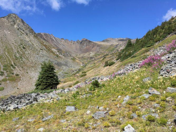 Wandern durchs Alpental
