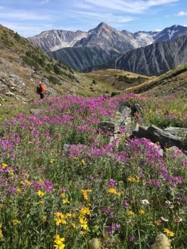 Alpenfeeling