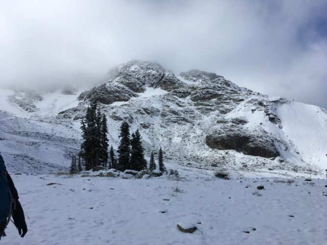 Whistler im Schnee