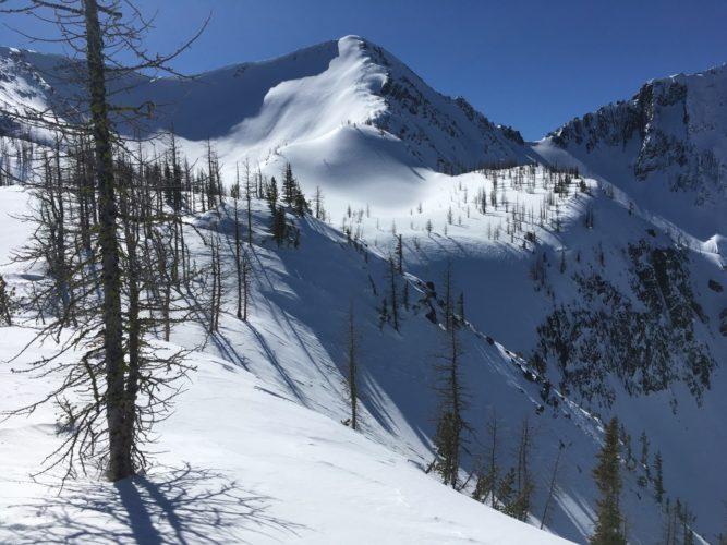 Mt Frosty